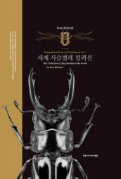 The Collection of Stag Beetles in the World