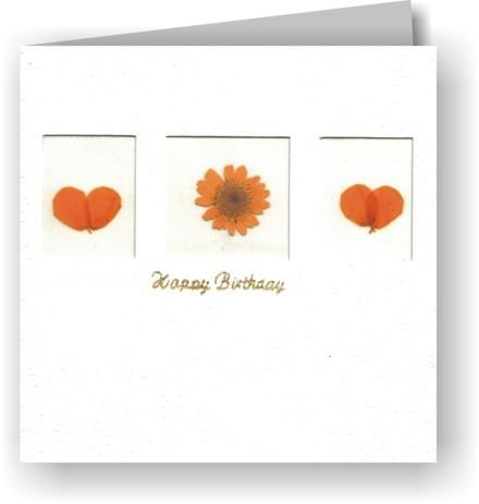 Grußkarten 2er-Set - 3 Fenster - Happy Birthday