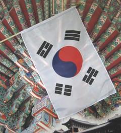 Stock-Fahne Südkorea: 30x45 cm